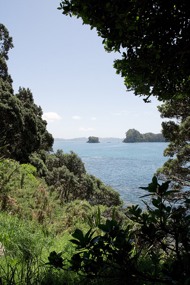 travel-photography-coromandel-new-zealand11