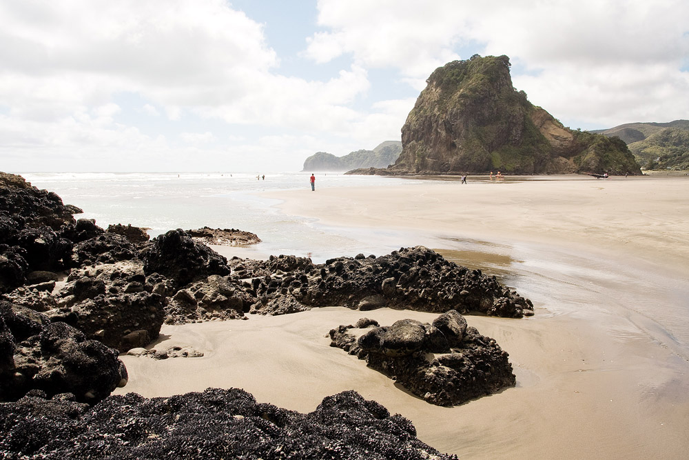 travel-photography-piha-new-zealand-09